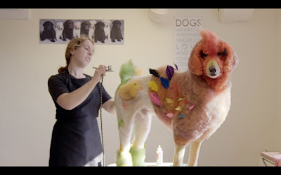 Well Groomed 2019 SXSW documentary movie still Nicole Beckman washing her dog