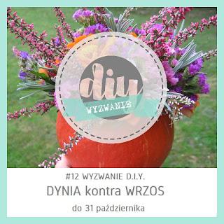 http://diytozts.blogspot.com/2016/10/12-wyzwanie-wrzos-kontra-dynia.html