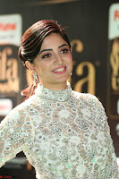Poonam Kaur in Beautiful Floor Length Gown at IIFA Utsavam Awards 2017  Day 2  Exclusive 25.JPG