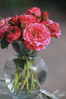 Roses Hot Pink stems in Clear glass vase flower arrangement display