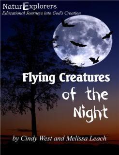 Night Flight by Antoine de Saint