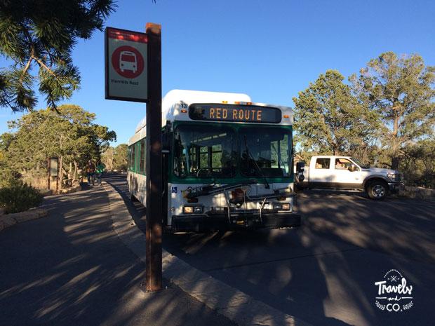 Guia para visitar el Gran Cañon bus