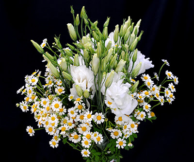 white daisy matricaria and lisianthus and wedding bouquet