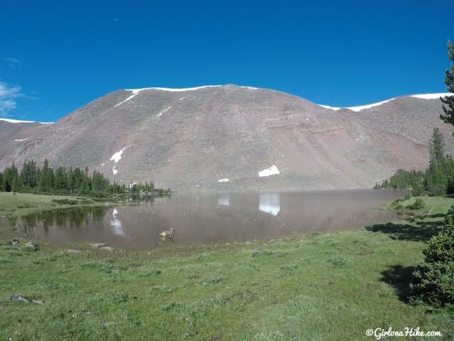 Backpacking to Farmer's Lake,Timothy Lakes Basin, Uintas