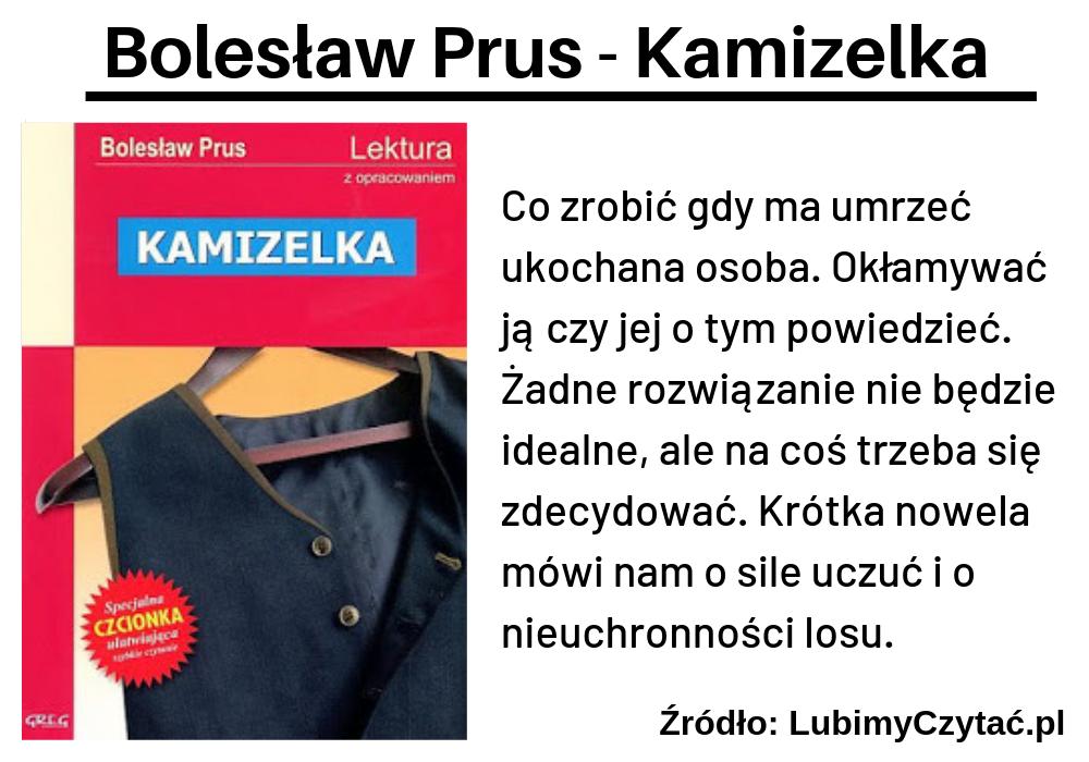 Bolesław Prus, Kamizelka, TOP 10, Marzenie Literackie