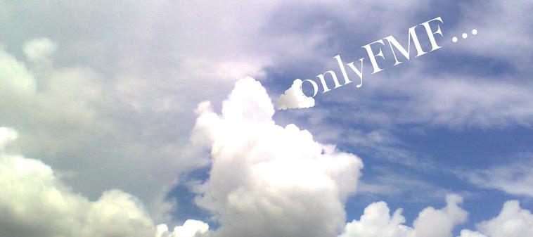 onlyFMF: Lyrics of Zero Hour Mashup 2013
