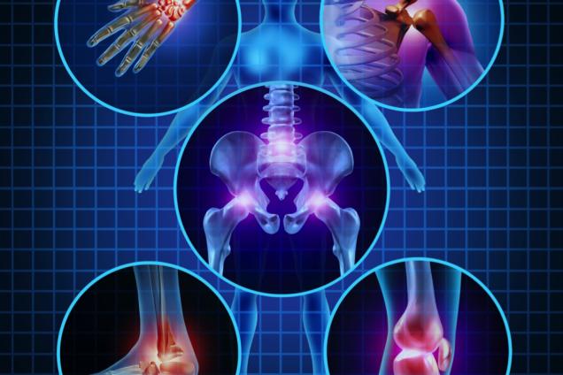 (Узи Одесса) Сделать узи позвоночника и шейного отдела, узи суставов: коленного, тазобедренного, а так же узи брюшной полости, почек и мочевого пузыря, щитовидной железы, узи молочных желез, гинекология можно здесь!