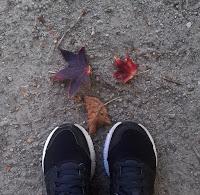 tênis e folhas de Ounono no chão