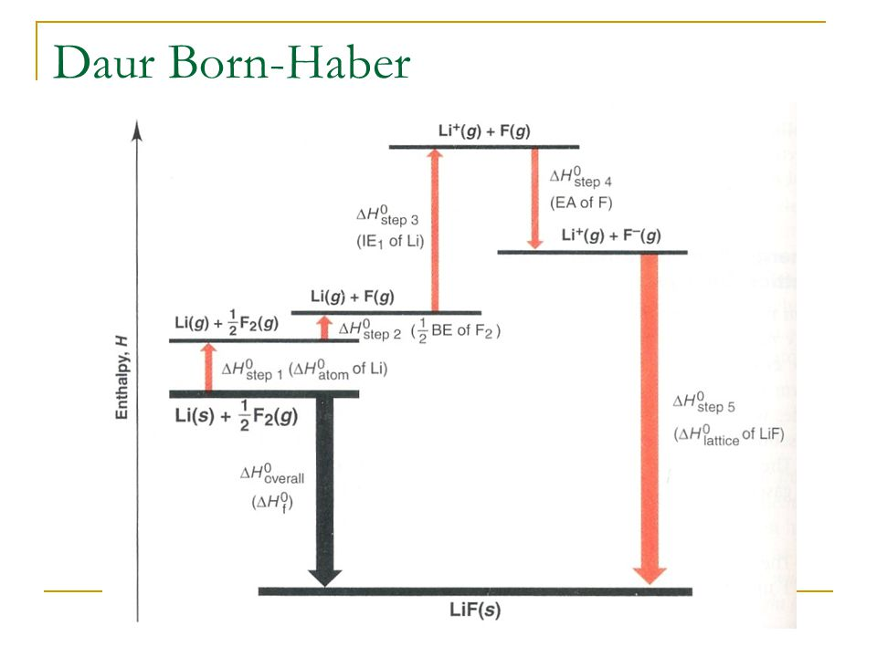 how to draw born haber cycle