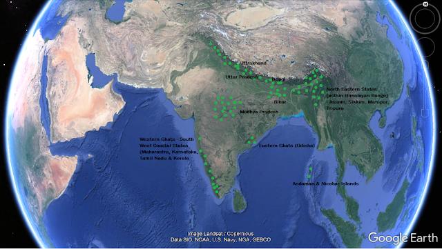Geo Distribution of Elaeocarpus
