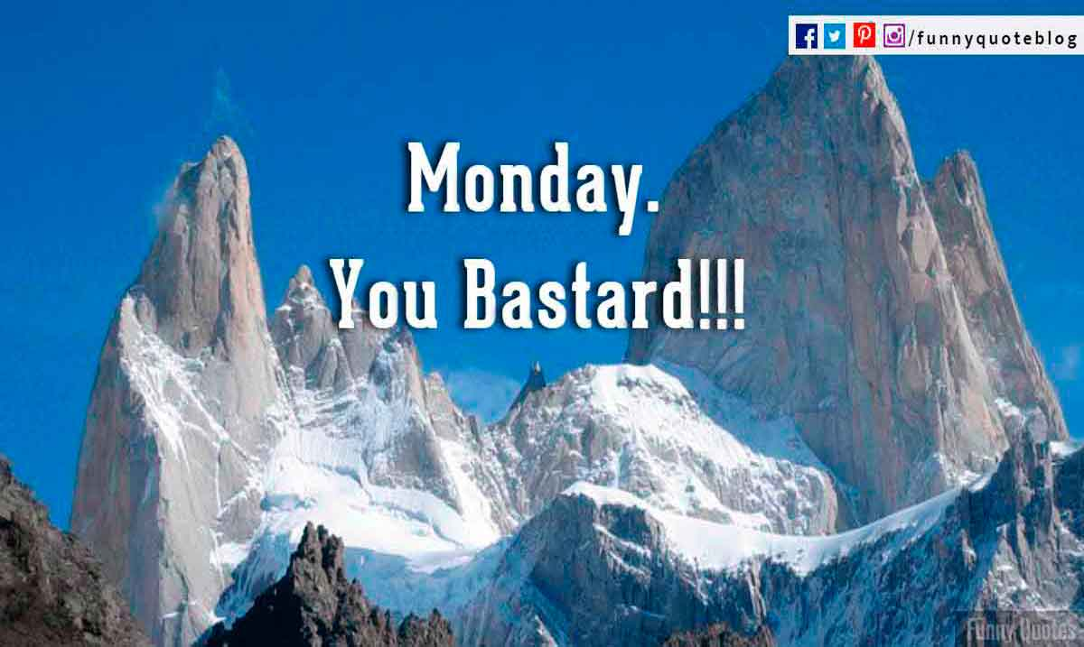 Monday you bastard.