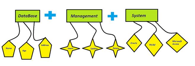 MySQL in Hindi - Database Management System (DBMS) - Best