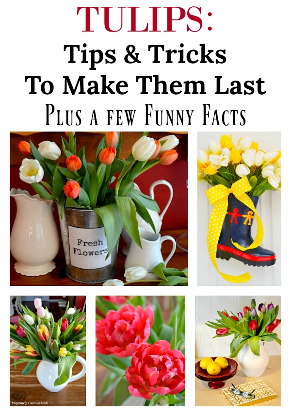 Tulips Tips and Tricks To Make Them Last and more...