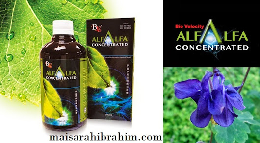 PREMIUM BEAUTIFUL CORSET:: ThE JoUrNEy Of mY LifE::: Bio Velocity Alfalfa Concentrated Promotion Price by Maisarah Ibrahim