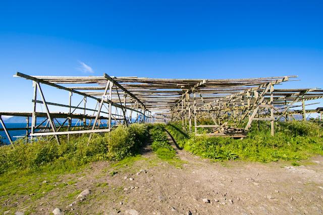 Essiccatoi per baccalà ad Henningsvaer-Isole Lofoten