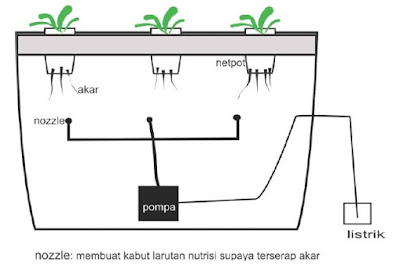 Teknik Tanam Hidroponik