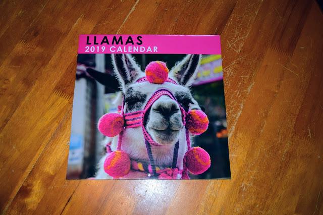Planning in 2019- Llamas Calendar