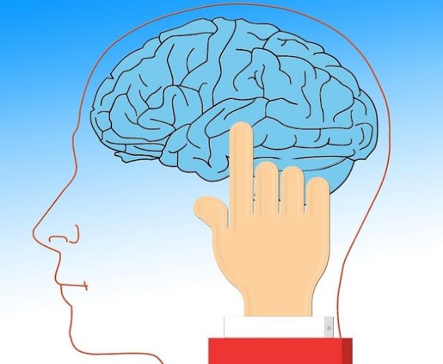 Memory power, remembering power, enhance brain, enhance memory power, याददाश्त, याद करने की क्षमता बढ़ाने के उपाय, दिमाग तेज करने, बौद्धिक विकास, brain power, how to improve memory, memory loss, याददाश्त बढ़ाने, याददाश्त तेज़ करने, भूलने की आदत सुधारने के लिए क्या करें,