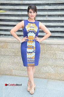 Manjusha Pictures in Blue Short Dress at Jaguar Movie Success Meet ~ Celebs Next