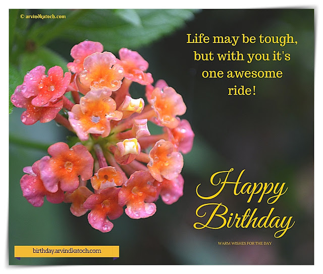 Happy Birthday, Card, Wallpaper, Life, tough, awesome, ride, Download