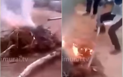 5 Minor boys burnt 3 puppies alive in Hyderabad