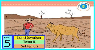 kunci-jawaban-tematik-kelas-5-tema-8-subtema-2-pembelajaran-5