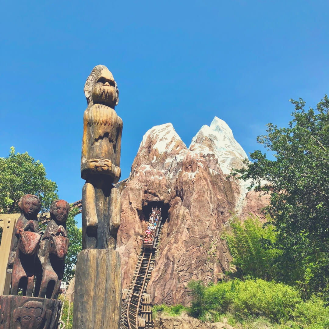 Top 7 Things You Should Do At Animal Kingdom, Walt Disney World | Expedition Everest is one of my boys' favourite coasters.