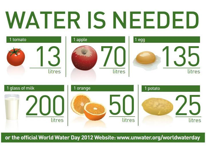 MNS Green Living: Water and Food Security