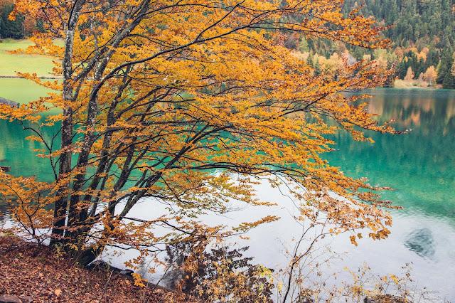 Hintersteiner-See-Rundweg  Wanderung Scheffau  Wilder Kaiser  Wandern Kitzbüheler alpen Tirol  Leichte Tour in traumhafter Kulisse 12