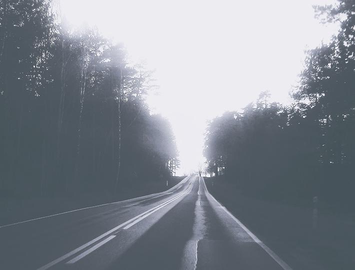 droga, życie jest drogą, las, vsco, cytaty, road, way, cele, progress, proges, postęp