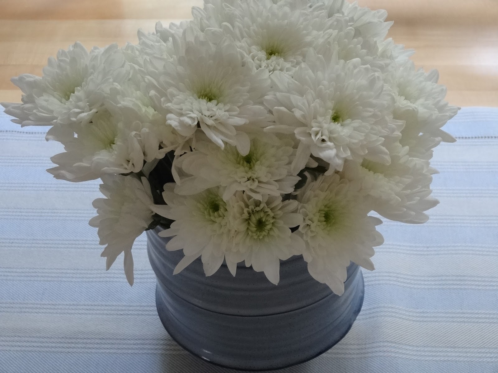The sketchy reader june 2016 store flowers for no reason other than i want to do it i guess that our backyard patio and deck looks nice and the inside looks sad without flowers izmirmasajfo