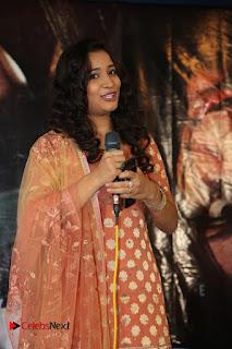 HBD Telugu Movie Teaser Launch  0003.jpg