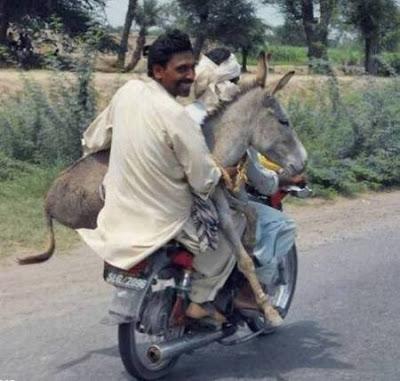 اقوى الصور المضحكة في العالم ,تنزيل صور مضحكه