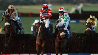 coral welsh national