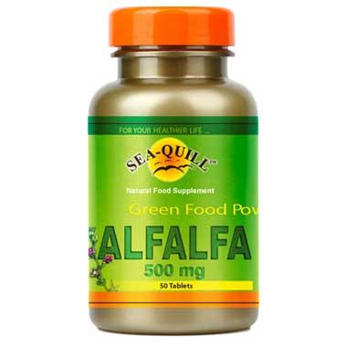 Suplemen Kesehatan Lambung atau Maag dengan Sea Quill Alfalfa