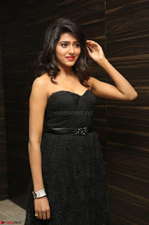 Shalu Chourasiya in spicy Sleeveless Strapless Black Top at O Pilla Nee Valla Movie Audio Launch Feb 2017 096.JPG