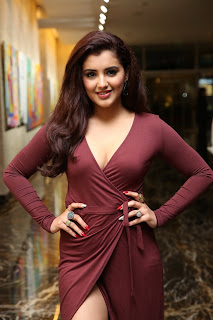 2019 feb 6 Malvika Sharma (HD) @ My South Diva Calendar 2019 Launch53