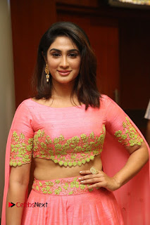 Actress Deepthi Pictures at Jaguar Movie Audio Launch  0013.JPG