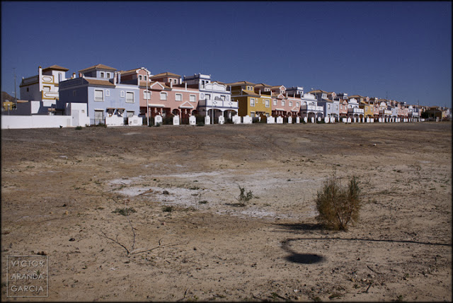 urbanismo,civilizacion,colpaso,perdida,biodiversidad,habitat,naturaleza,arriba-extraña