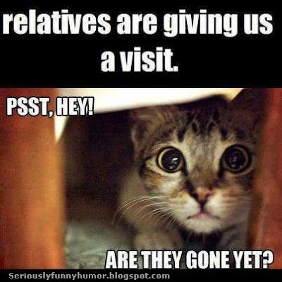Relatives are giving us a visit. Psst, Hey! Are they gone yet? Asks Mistuh Kitty! Funny