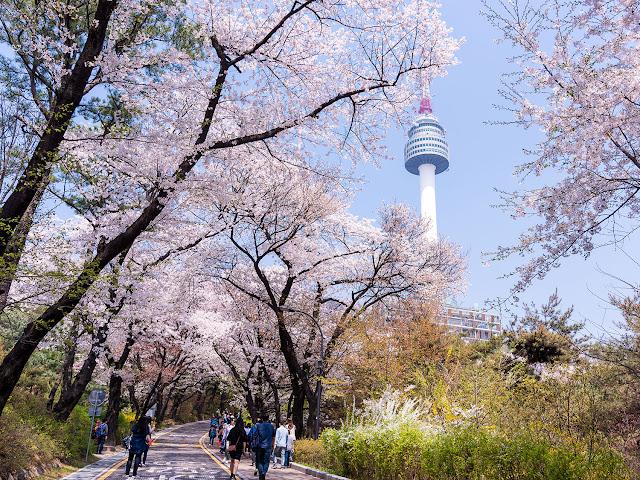 Honeymoon ke Korea Selatan - Namsan Park