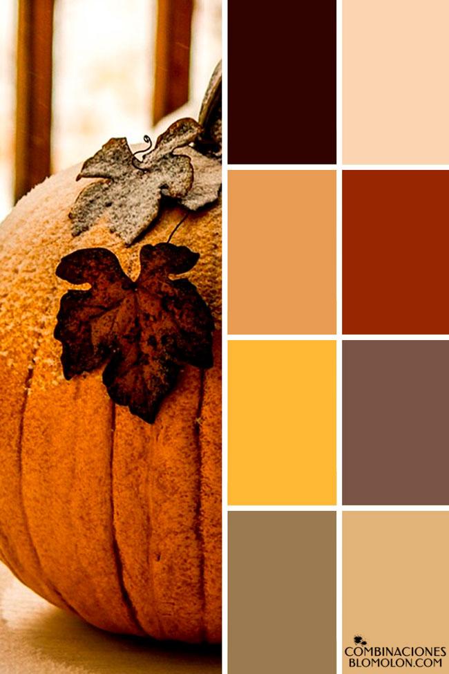 combinacion_de_colores_variedad_5