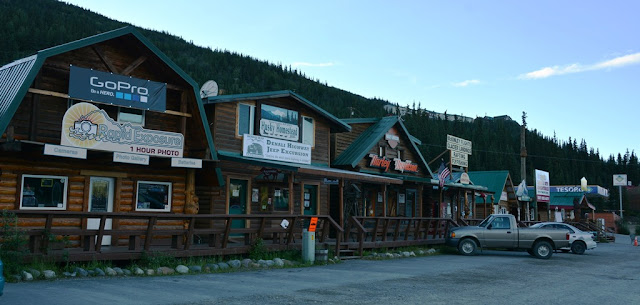 Denali City