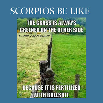 scorpions be like