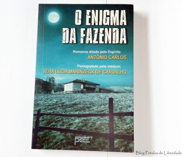 Resenha, livro, O enigma da fazenda, Vera Lúcia Marinzeck de Carvalho, Petit