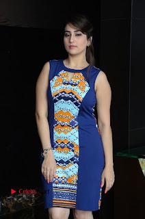 Actress Anchor Manjusha Pictures in Blue Short Dress at Jaguar Movie Success Meet .COM 0014.jpg
