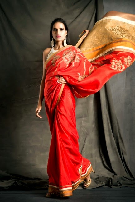 Midsummer Saree Collection 2014 by SatyaPaul