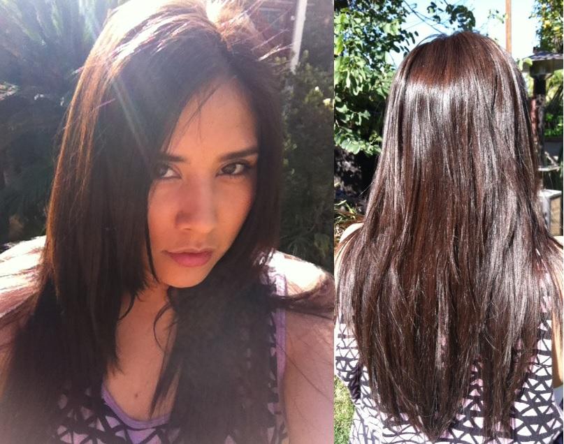 Garnier Hair Color Dark Mahogany Brown Hair Color Highlighting And
