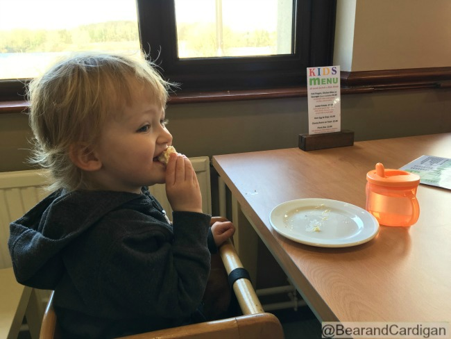 toddler in high chair eating at a table