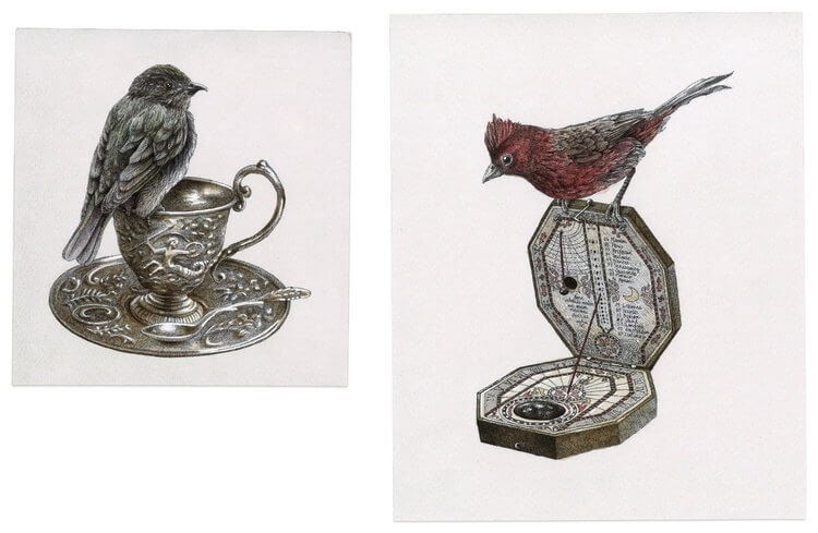 08-Cup-And-Saucer-Plus-Sun-Dial-Steeven-Salvat-Ink-Drawings-Birds-on-Vintage-Objects-and-Machines-www-designstack-co
